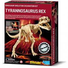 Set Arheologic Tyrannosaurus Rex 4M