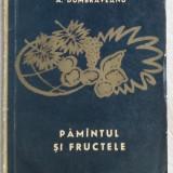 ANGHEL DUMBRAVEANU - PAMANTUL SI FRUCTELE (VERSURI, editia princeps - EPL 1964) - Carte poezie