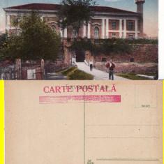 Insula Ada Kaleh - Moscheia - Carte Postala Banat 1904-1918, Necirculata, Printata