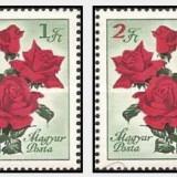 Ungaria 1961 - trandafiri 1 mai, serie neuzata