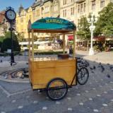 Vand coffee bike pe comanda - Bicicleta de oras, 20 inch, 24 inch, Numar viteze: 7