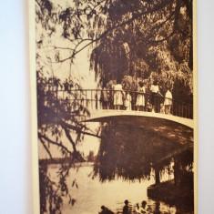 Carte postala - Poza - Bucuresti - Parc - Carte Postala Banat dupa 1918, Circulata, Printata