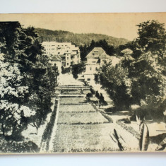 Carte postala - Govora - Parcul - Carte Postala Banat dupa 1918, Circulata, Printata