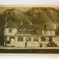 Carte postala - Poiana Stalin - Carte Postala Banat dupa 1918, Circulata, Printata