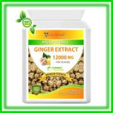 Extract de Ghimbir 12000 Mg - Antiinflamator Puternic 60 Caps - Produs in Anglia