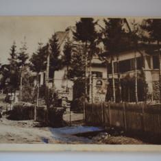 Carte postala - Poiana Tapului - Carte Postala Banat dupa 1918, Circulata, Printata