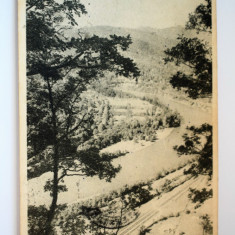 Carte postala - Valea Oltului - Carte Postala Banat dupa 1918, Circulata, Printata