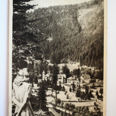 Carte postala - Poza - Tusnad - Carte Postala Banat dupa 1918, Circulata, Printata