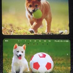 JAPONIA - ANIMALE DE COMPANIE. CAINI. LOT 2 CARTELE TELEFONICE - Cartela telefonica straina