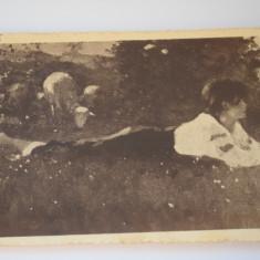 Carte postala - Poza - Grigorescu - In pajiste - Carte Postala Banat dupa 1918, Circulata, Printata