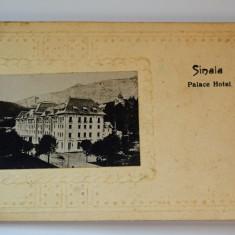 Carte postala - Sinaia - Palace Hotel - Carte Postala Banat dupa 1918, Circulata, Printata