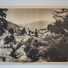 Carte postala - Busteni - Carte Postala Banat dupa 1918, Circulata, Printata
