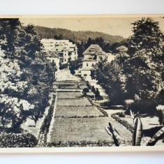 Carte postala - Poza - Govora - Parcul - Carte Postala Banat dupa 1918, Circulata, Printata