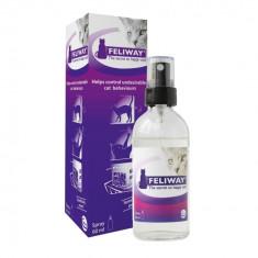 Feliway spray pentru pisici 60ml - Pisica de vanzare