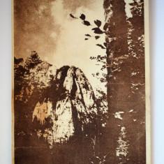Carte postala - Poza - Bucegi - Carte Postala Banat dupa 1918, Circulata, Printata