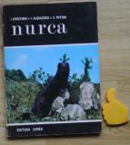 Nurca Croitoru Albulescu Petriu