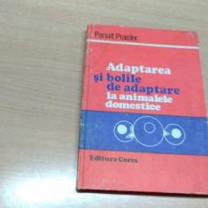 ADAPTAREA SI BOLILE DE ADAPTARE LA ANIMALELE DOMESTICE-PANAIT PRAISLER