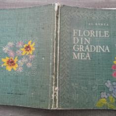 Florile din gradina mea - Al. Borza - Carte gradinarit