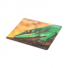 Mousepad Natec Lizard