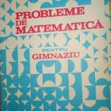 Probleme de matematica pentru gimnaziu an 1985/447pag- Petrica / Stefan / Alexe - Carte Matematica