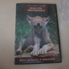 Dvd cu animale - Film documentare Altele, Altele