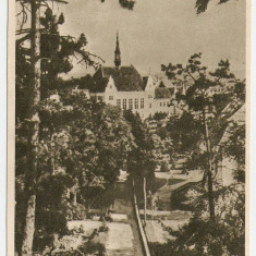 C.P HUNEDOARA - DEVA, PARCUL - Carte Postala Transilvania dupa 1918, Necirculata, Printata