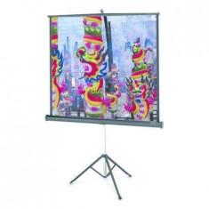 Ecran de proiectie cu trepied Projecta TRIPOD Professional panza Matte White 162 x 213 cm
