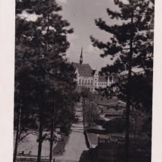 DEVA PARCUL SI PREFECTURA FOTO AGFA - Carte Postala Transilvania dupa 1918, Necirculata, Fotografie