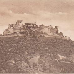 DEVA CETATEA - Carte Postala Transilvania dupa 1918, Necirculata, Printata