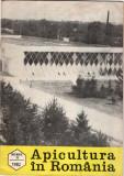 Revista  - Apicultura  in  Romania -noiembrie  1982
