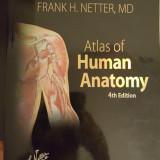 Netter - Atlas of Human Anatomy, 4th edition, lb. engleza