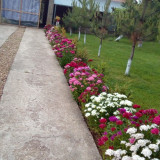 Urgent casa la cheie in Valenii de Munte - Casa de vanzare, 140 mp, Numar camere: 4, Suprafata teren: 3000