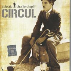 Film - Seria filme cu dichis Dilema - Charlie Chaplin - Circul !!! - Film Colectie, DVD, Altele