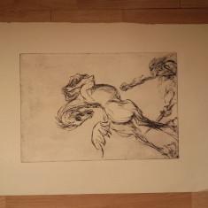 GRAVURA MARCEL CHIRNOAGA, nesemnata - Pictor roman, Animale, Cerneala, Abstract