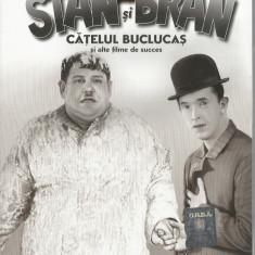 Film - Filme Adevarul - Seria Stan si Bran - Catelusul buclucas !!!! - Film Colectie, DVD, Altele