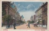 BUCURESTI  BULEVARD ELISABETA  TRAMVAI  MAGAZINE  CIRC. 1924, Circulata, Printata