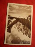 Ilustrata - Valea Cerbului - Bucegi - Valea Prahovei , interbelica ,Ed.Scrisul, Necirculata, Printata
