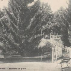 BAILE GOVORA INTRAREA IN PARC LIBRARIA ANASTASIU & PETRESCU RM. VALCEA CIRC.1929 - Carte Postala Oltenia dupa 1918, Circulata, Printata
