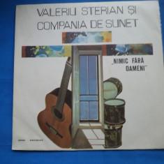 VINIL Muzica Folk electrecord-VALERIU STERIAN SI COMPANIA DE SUNET
