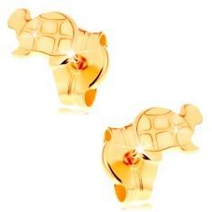 Cercei de aur 585 - ţestoasă lucioasă cu detalii gravate - Cercei aur