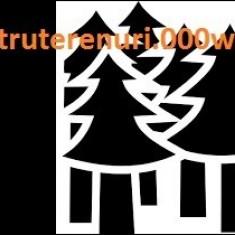 Alarmă pentru terenuri, păduri şi perimetre comerciale/industriale - Electromagneti