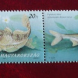 UNGARIA 1997 - PESTI, straif nestampilat (I) K117 - Timbre straine