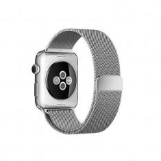 Curea smartwatch Apple Watch 42mm Silver Milanese Loop