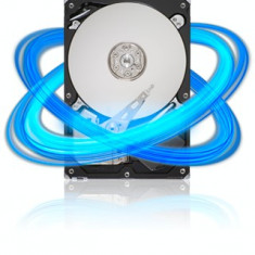 Hard disk Seagate Barracuda 250GB ST3250312AS