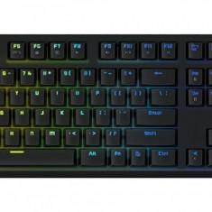 Tastatura Tesoro Gram Spectrum G11SFL RGB Mechanical - Tastatura PC Tesoro, Gaming