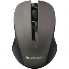 Mouse Canyon CNE-CMSW1G Gray, USB, Optica