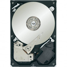 Hard disk Seagate ST1000VM002 Video 3.5 1TB SATA-III 5900rpm 64MB