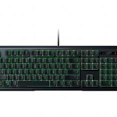 Tastatura Razer ORNATA-EXPERT MEMBRANE GAMING - Tastatura PC Razer, Cu fir, USB