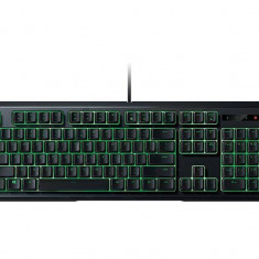 Tastatura Razer ORNATA-EXPERT MEMBRANE GAMING, Cu fir, USB