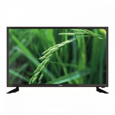 Televizor Samus LED LE32C1 HD Ready 81 cm Black - Televizor LED Samus, Smart TV